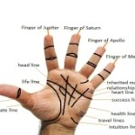 Lines In Palms And Their Meanings