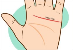 Palm Reading For Heart Line
