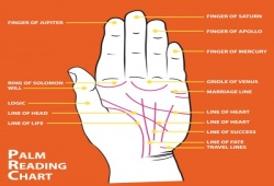 What Is Palm Reading Chart And Its Explanation?