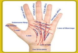 What Is Palm Reading Chart?