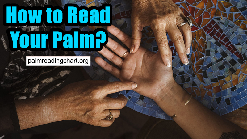 How to Read Your Palm: A Complete Tutorial for Beginners