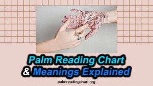 Palm Reading Chart and Meanings Explained (Learn NOW)